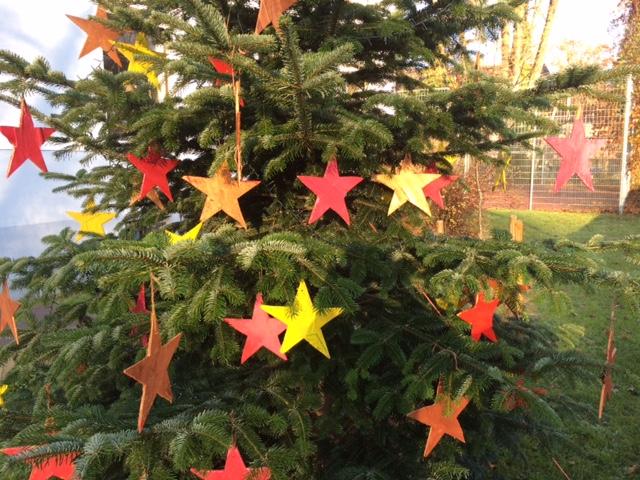 Aktion: Weihnachtsbaum im Vorgarten schmücken